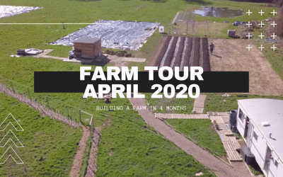 Bringing the Farm to you – Farm Tour April 2020.