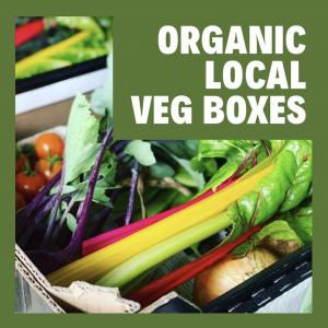 Organic Veg Box East Sussex