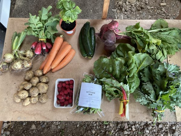 Fanfield Farm Veg Box East Sussex
