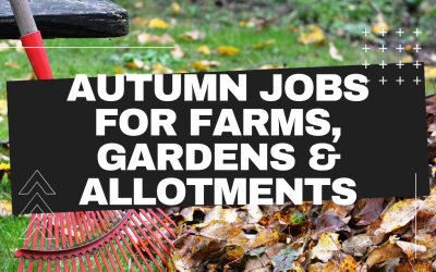 Autumn Farm, Garden & Allotment Jobs