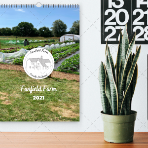 Fanfield Farm Calendar Mockup