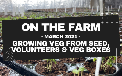 On The Farm – March 2021 Update