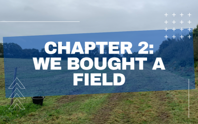 2.) We bought a field….